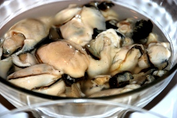 Shucked oysters